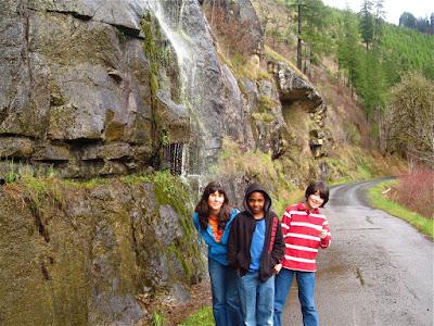 Oregon, Lane County, Coast Range, Old Stagecoach Road, Siuslaw River