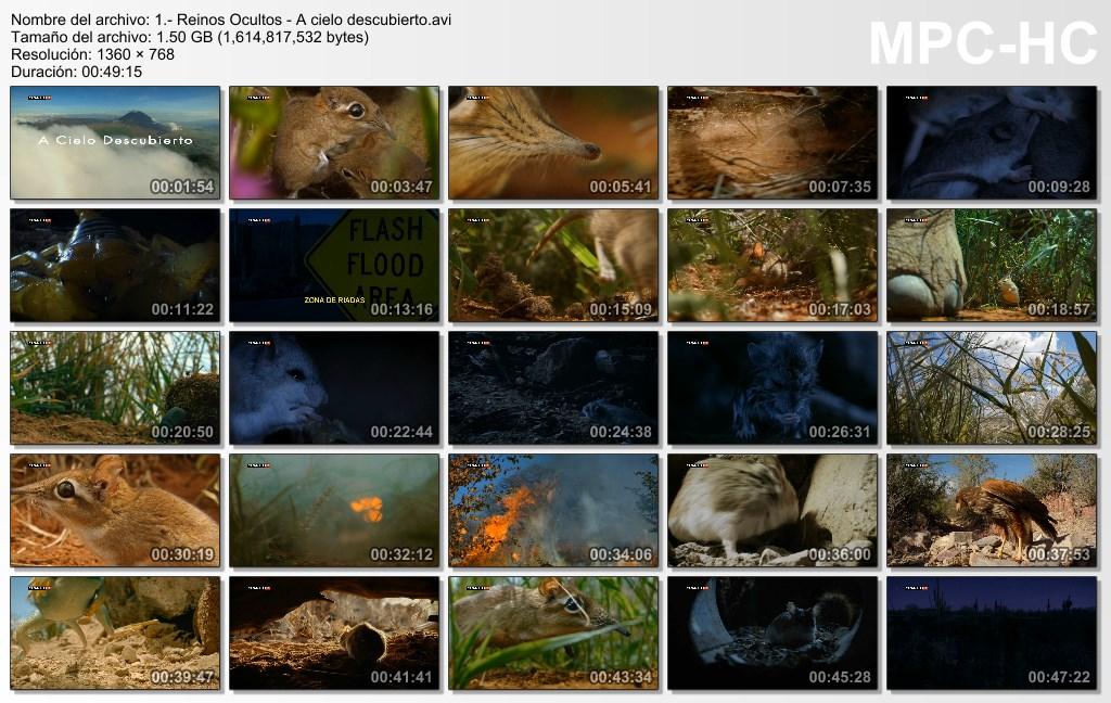 4GB|BBC|Reinos Ocultos|3-3|HDTV|720p|MEGA|Taykun