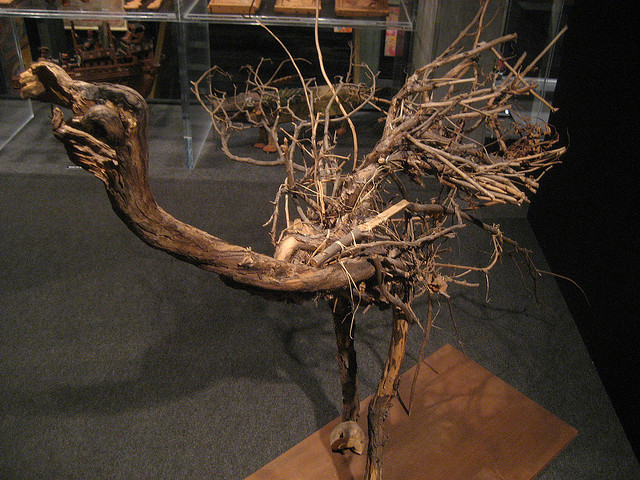 decorating diva tips using branches and twigs to decorate your home