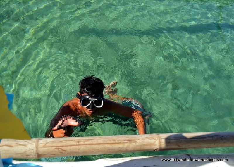 diving for starfish at Starfish Island Palawan