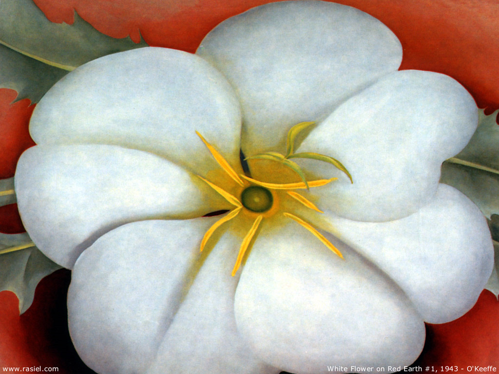 http://2.bp.blogspot.com/-i3dTaH7DYRQ/T6oHGi81GuI/AAAAAAAABrk/056zz2FOEvE/s1600/georgia-o-keeffe-white-flower-on-red-earth.jpg