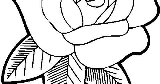 Dibujos De Rosas Para Colorear Imujer