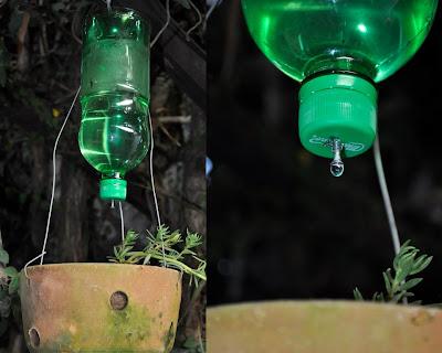 Florescer De Ideias Ecológicas Produto Regador Com Garrafa Pet