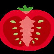 トマトの断面のイラスト