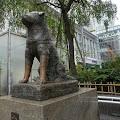 渋谷ハチ公,犬,銅像〈著作権フリー無料画像〉Free Stock Photos