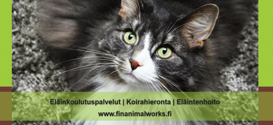 FinAnimalWorks