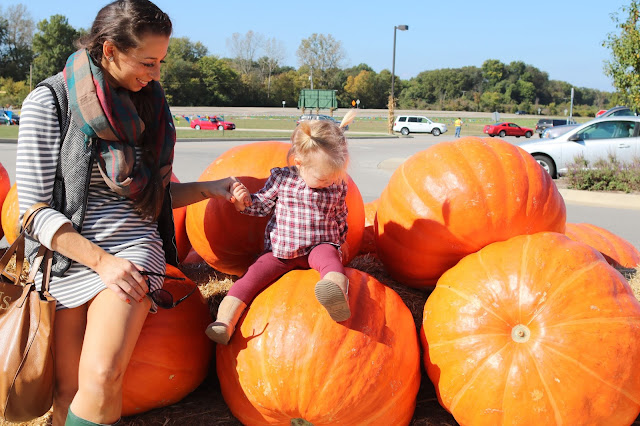eckerts eckert's orchard farm pumpkin patch fall picking st saint louis toddler activities