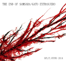 Split Gato extranjero/The end of samsara