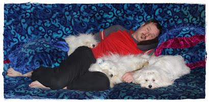 so ein Hundeleben /such a dog's life :-)