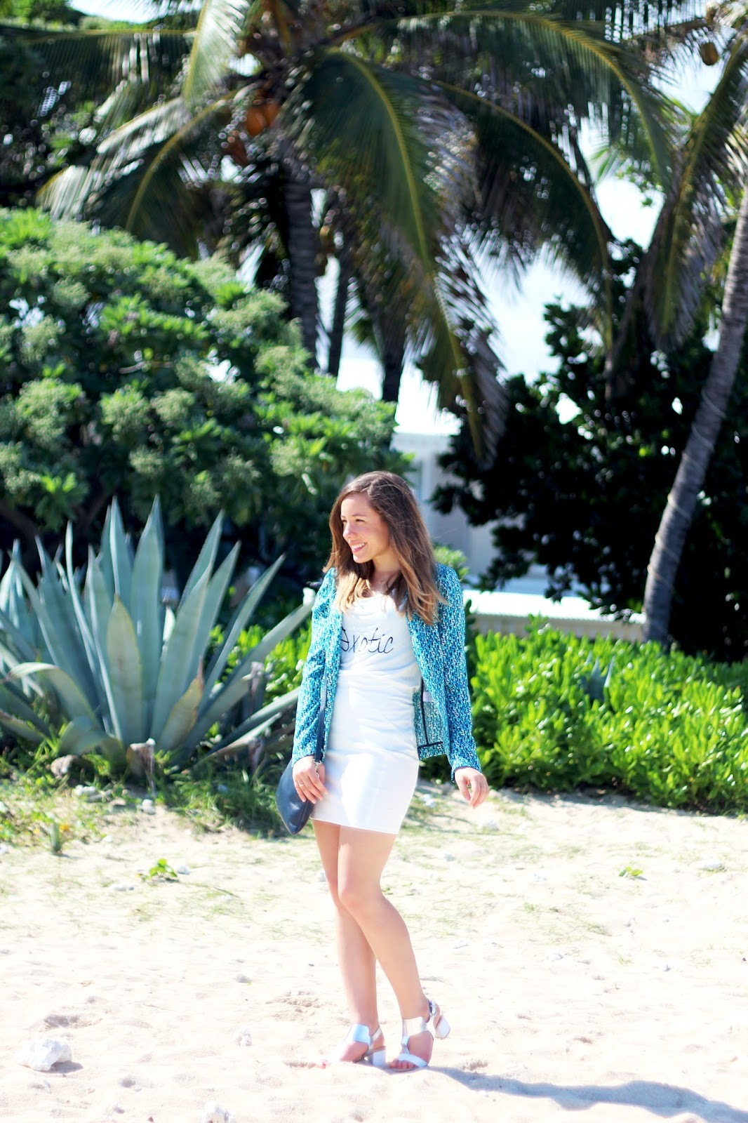 Palmiers île de la Réunion blog mode