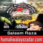 http://audionohay.blogspot.com/2014/11/saleem-raza-nohay-2015.html