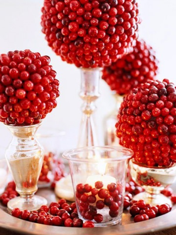 Holiday Centerpiece with Cranberries
