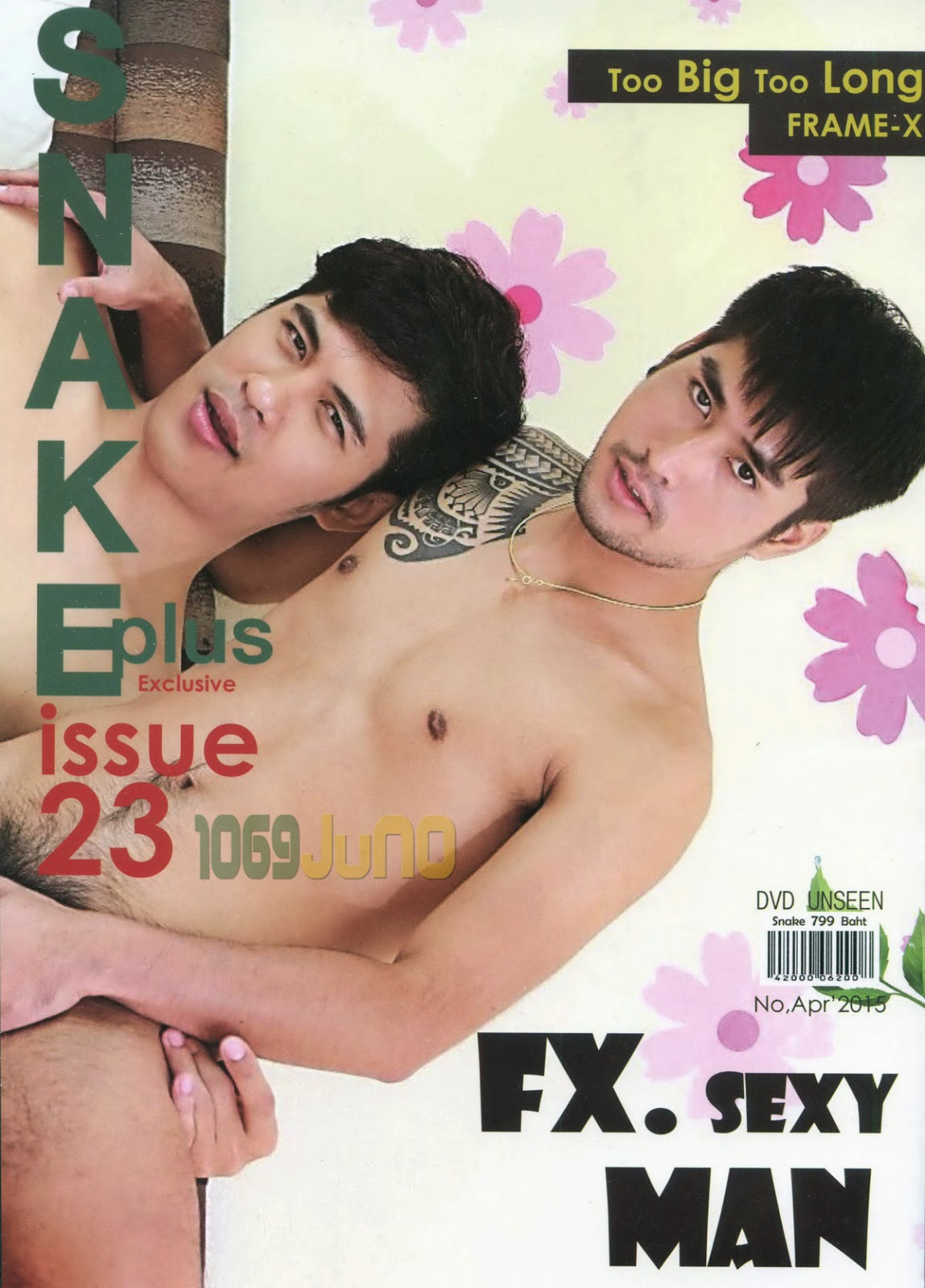 gay and lesbian magazines