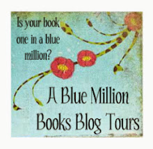 Now offering blog tours!
