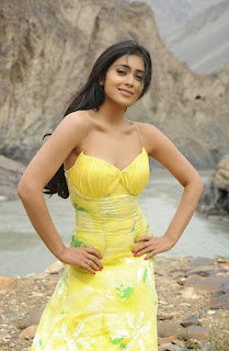 South Indian  Beauty Shriya Saran
