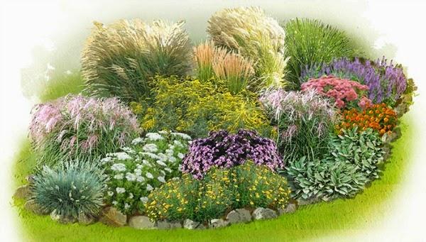 Un jardín de gramíneas ornamentales Plantas  Diseño de jardines