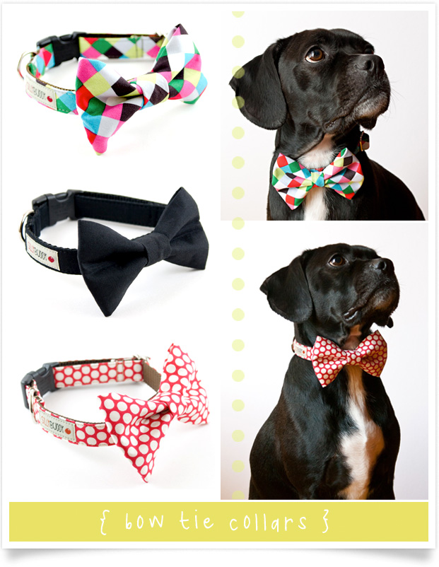 bow tie collars for dogs