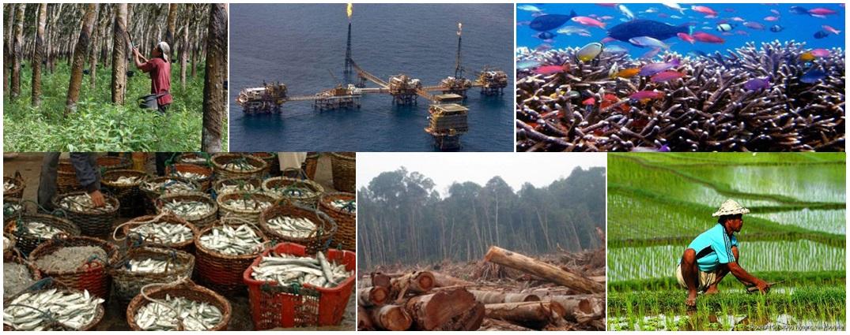 5 Potensi Sumber Daya Alam Indonesia