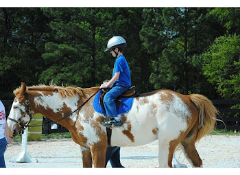 Therapy On Horseback