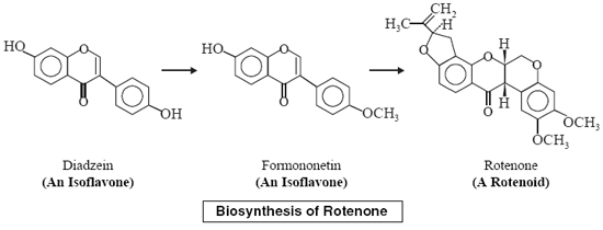 biosynthesis of rotenone a simple isoflavone called daidzein