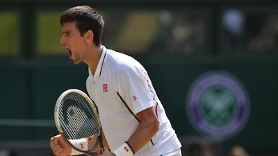 Novak Djokovic Lose 2013 Wimblidon Championship