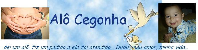 Alô Cegonha!