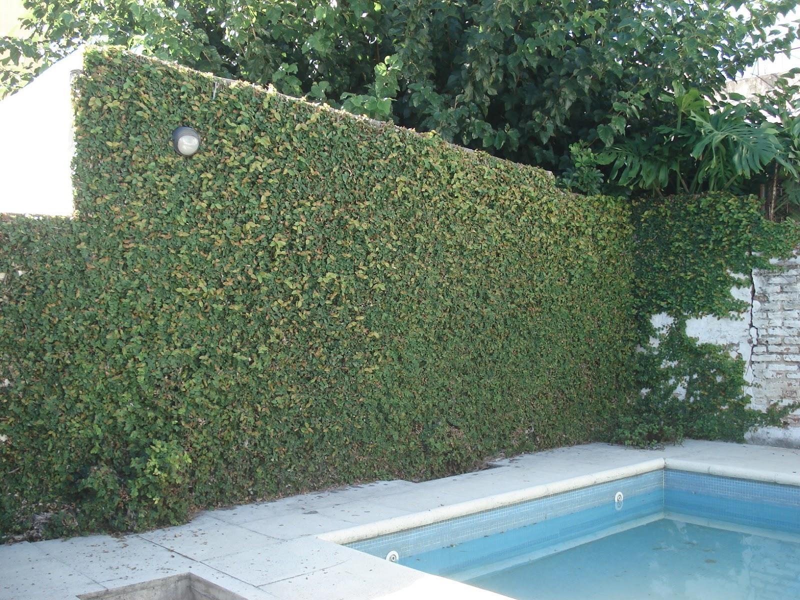 Reverdir jardineria y paisajismo mantenimientos for Jardineria y paisajismo