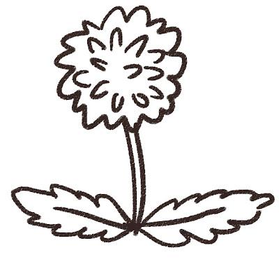 たんぽぽのイラスト(花) モノクロ線画