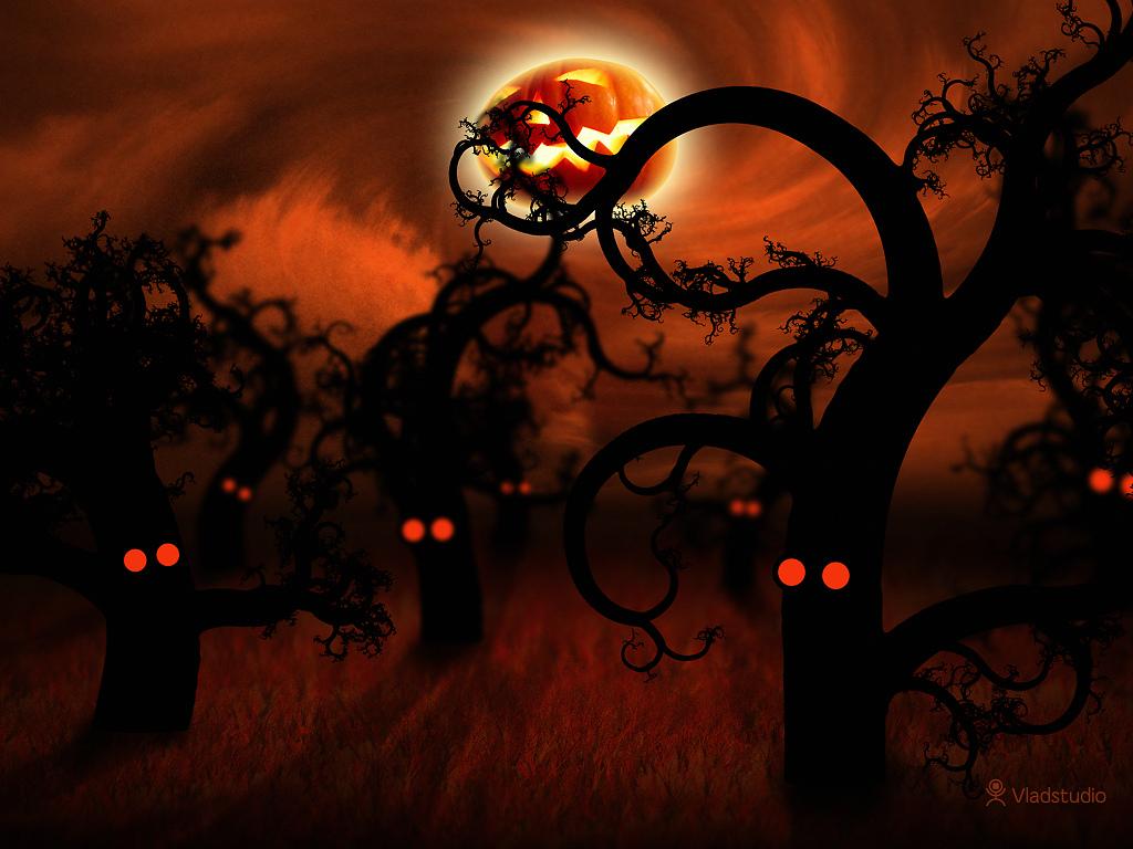 Halloween In The Midnight Forest Desktop wallpapers  - midnight forest halloween wallpapers