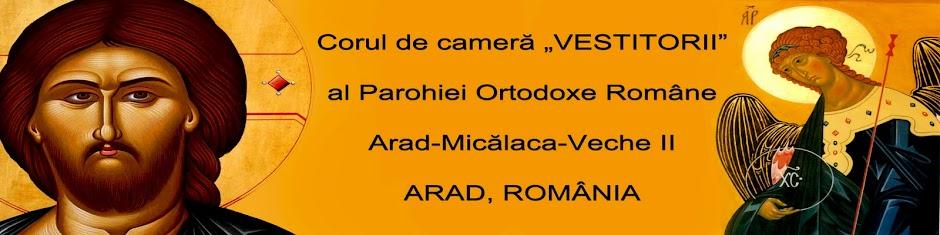 """Corul de Cameră """"Vestitorii"""" Arad"""