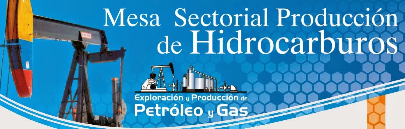Boletín Mesa Producción de Hidrocarburos