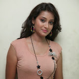 Bhanu Sri Hot Photos at Veedi Pourusham Movie Press Meet 8