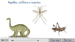 http://primerodecarlos.com/SEGUNDO_PRIMARIA/diciembre/Unidad5/actividades/cancion_5.swf