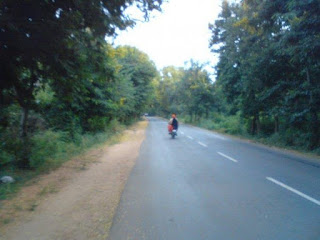 The road from the turn off Mysore road till Big Banyan Tree