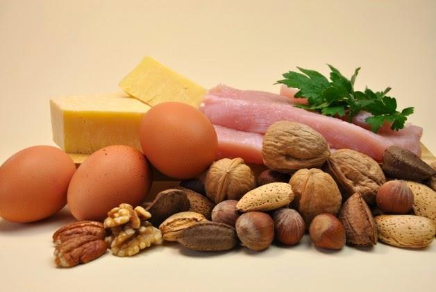 مصادر البروتين في الغذاء
