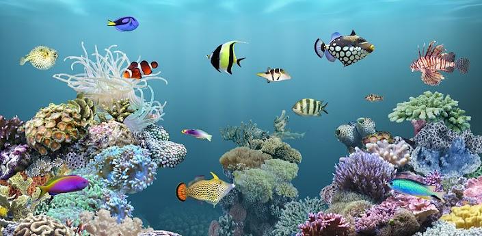 aniPet free Aquarium Live Wallpaper 2.4 Apk for Android