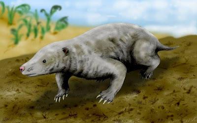 mamiferos en el jurasico Fruitafossor