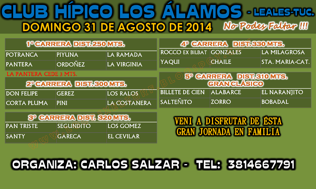 31-08-14-PROG-HIP.LOS ALAMOS-TUC.