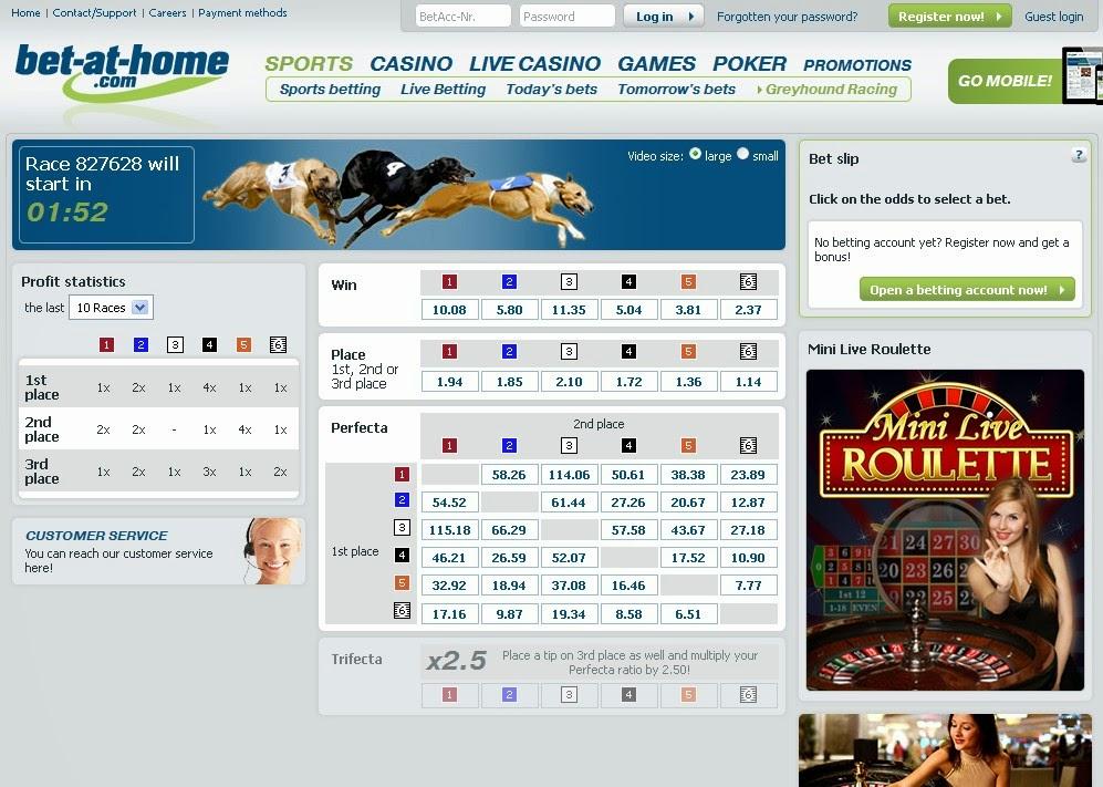 Bet-at-home Greyhound Racing Screen