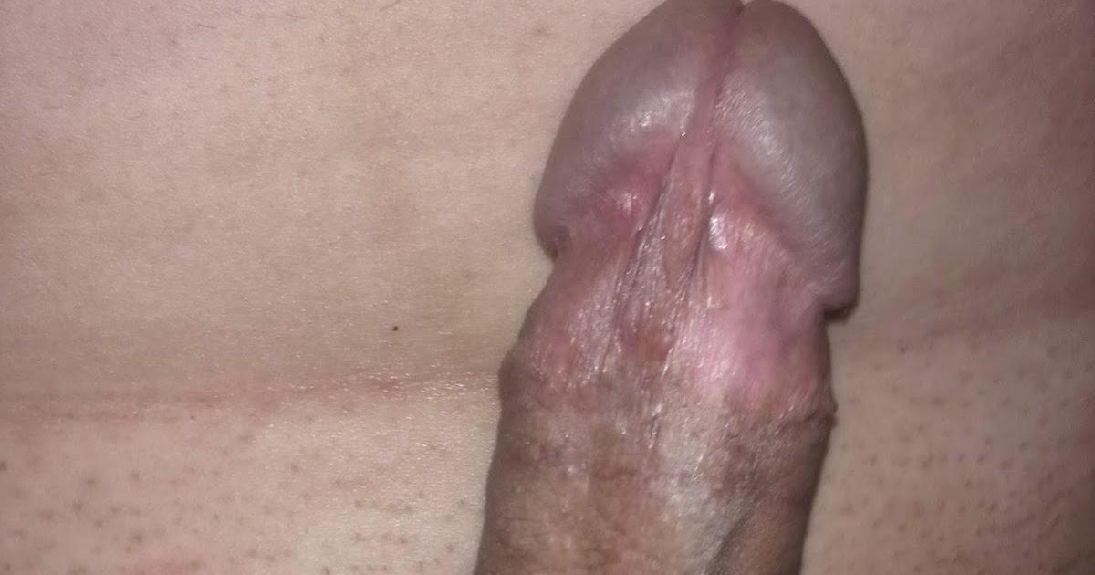 Schwanz Penis welcher ist der Beste - Schwanz Penis