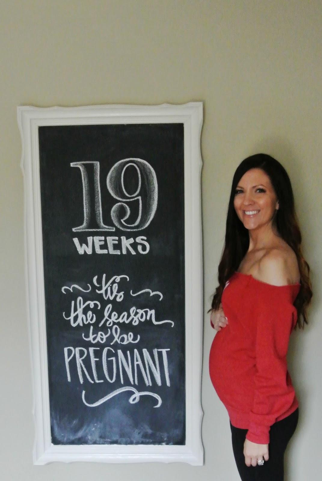 19 Weeks - GarvinAndCo.com