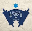 ISRAELITAS DA NOVA ALIANÇA