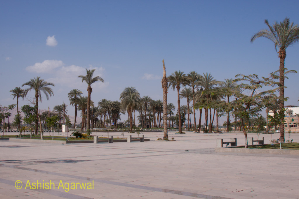 Palm trees and wide open space in front of the Karnak temple in Luxor