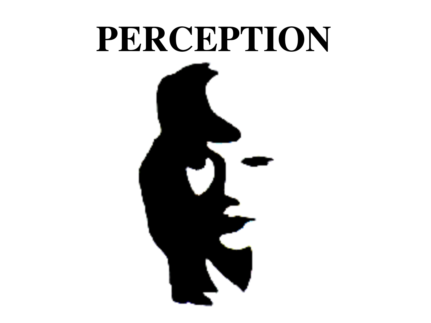 social perception Social perception is the initial stage of evaluating intentions and psychological  dispositions of others by analysis of gaze direction, body movement, and other.