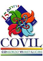covilvivai.com