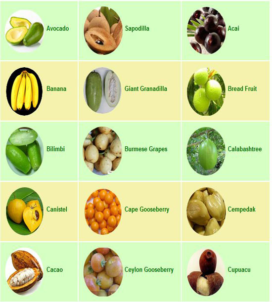 rare fruits fruits list