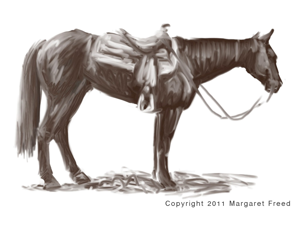 Quarter horse drawing - photo#5