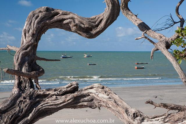dicas de viagem a Acaraú no Ceará.
