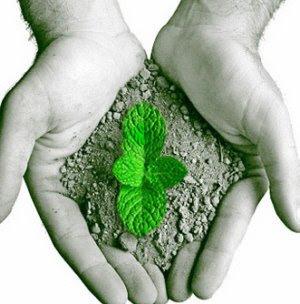 Natureza: Homem com planta nascendo na terra das mãos