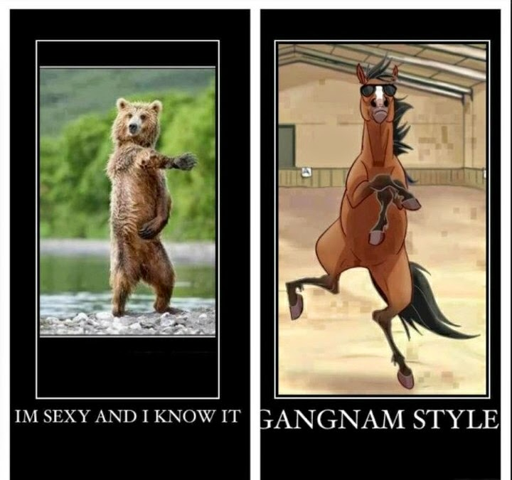 Imagenes chistosas y graciosas para compartir y descargar gratis